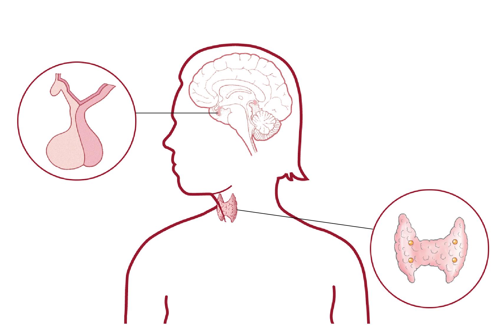 illamående och yrsel vid mens